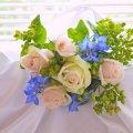 image flowers_hr_0004-jpg