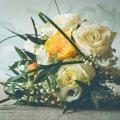 image flowers_hr_0007-jpg
