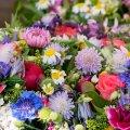 image flowers_lr_0014-jpg
