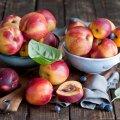 image fruits_hr_0003-jpg