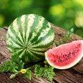 image fruits_hr_0005-jpg
