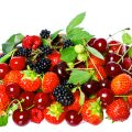 image fruits_hr_0019-jpg