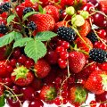 image fruits_hr_0022-jpg