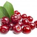 image fruits_hr_0026-jpg