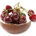 image fruits_hr_0027-jpg