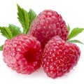 image fruits_hr_0029-jpg