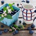 image fruits_lr_0012-jpg