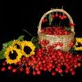 image fruits_lr_0023-jpg