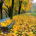 image bench_hr_0002-jpg