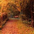 image bench_hr_0003-jpg