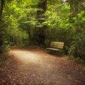 image bench_hr_0004-jpg