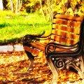 image bench_hr_0008-jpg