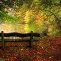 image bench_hr_0010-jpg