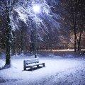 image bench_hr_0011-jpg