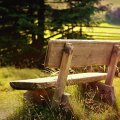 image bench_lr_0004-jpg