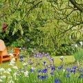 image bench_lr_0005-jpg