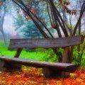 image bench_lr_0007-jpg