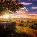 image bench_lr_0010-jpg