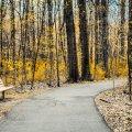image bench_lr_0012-jpg