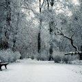 image bench_lr_0015-jpg