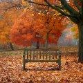 image bench_lr_0016-jpg