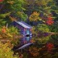 image farms_and_houses_lr_0015-jpg