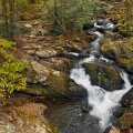 image rivers_lr_0008-jpg