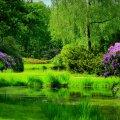 image rivers_lr_0014-jpg