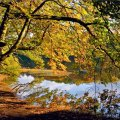 image rivers_lr_0022-jpg