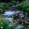 image rivers_lr_0029-jpg