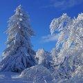 image snow_and_ice_hr_0001-jpg