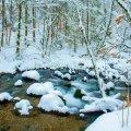 image snow_and_ice_hr_0004-jpg