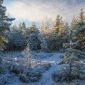 image snow_and_ice_hr_0017-jpg
