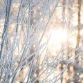 image snow_and_ice_hr_0021-jpg