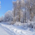 image snow_and_ice_hr_0030-jpg
