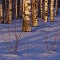 image snow_and_ice_lr_0008-jpg