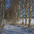 image snow_and_ice_lr_0014-jpg