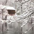 image snow_and_ice_lr_0016-jpg