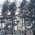 image snow_and_ice_lr_0018-jpg