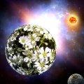 image space_lr_0019-jpg